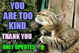 YOU ARE TOO KIND. ONLY UPVOTES! THANK YOU | made w/ Imgflip meme maker