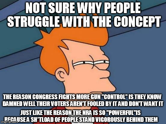 "There's a very good reason the NRA is effective and Congress doesn't (mis-) ""act"" 