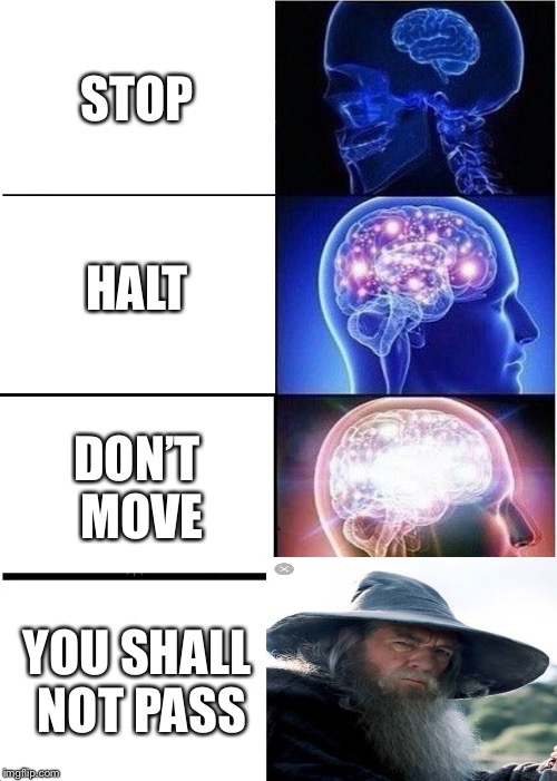 Expanding Brain Meme | STOP HALT DON'T MOVE YOU SHALL NOT PASS | image tagged in memes,expanding brain | made w/ Imgflip meme maker