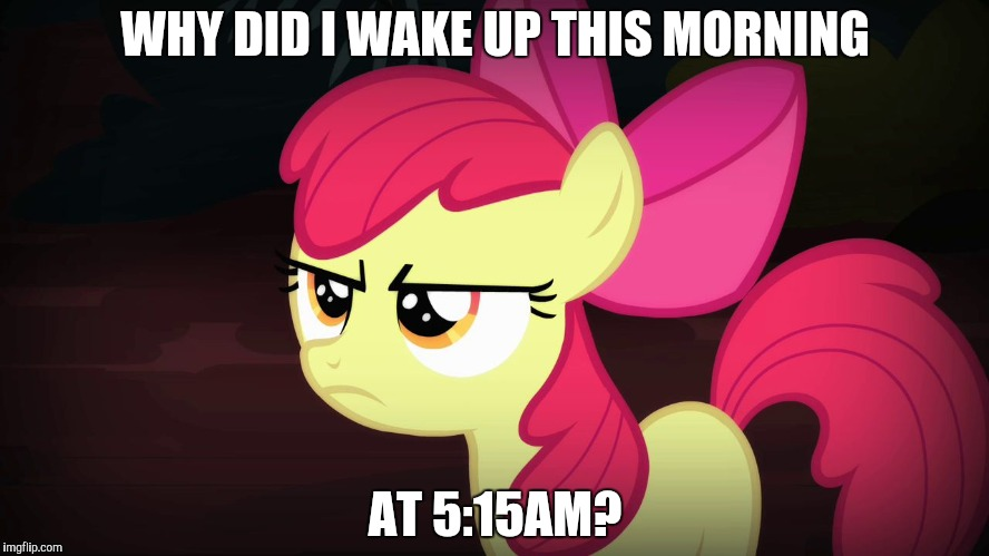 I can't do anything because the rest of my family is sleeping! | WHY DID I WAKE UP THIS MORNING AT 5:15AM? | image tagged in angry applebloom,memes,sleep | made w/ Imgflip meme maker