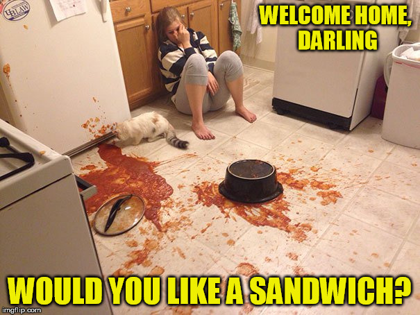 WELCOME HOME, DARLING WOULD YOU LIKE A SANDWICH? | made w/ Imgflip meme maker