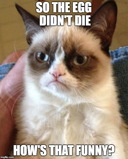Grumpy Cat Meme | SO THE EGG DIDN'T DIE HOW'S THAT FUNNY? | image tagged in memes,grumpy cat | made w/ Imgflip meme maker