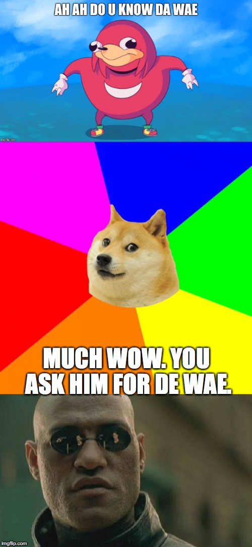 lol so funny | MUCH WOW. YOU ASK HIM FOR DE WAE. | image tagged in uganda knuckles,advice doge,matrix morpheus | made w/ Imgflip meme maker