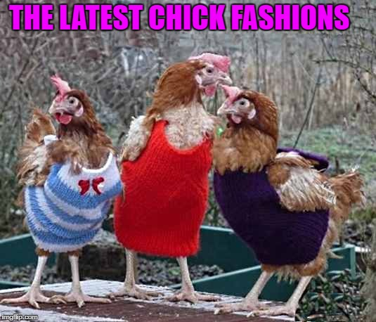 The latest chick fashions  | THE LATEST CHICK FASHIONS | image tagged in hot chicks | made w/ Imgflip meme maker
