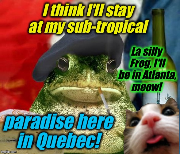 I think I'll stay at my sub-tropical paradise here in Quebec! La silly Frog, I'll be in Atlanta, meow! | made w/ Imgflip meme maker