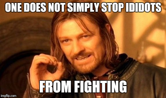One Does Not Simply Meme | ONE DOES NOT SIMPLY STOP IDIDOTS FROM FIGHTING | image tagged in memes,one does not simply | made w/ Imgflip meme maker