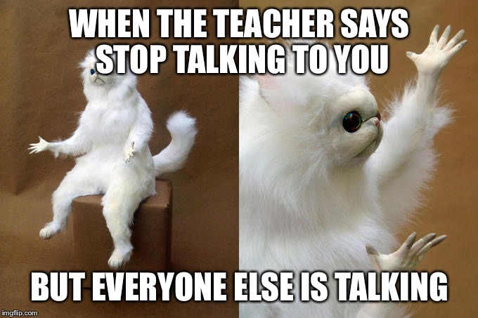 Persian Cat Room Guardian | WHEN THE TEACHER SAYS STOP TALKING TO YOU BUT EVERYONE ELSE IS TALKING | image tagged in memes,persian cat room guardian | made w/ Imgflip meme maker