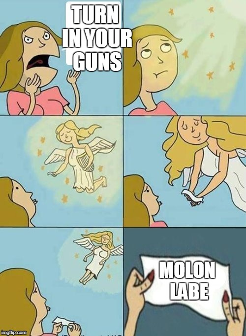 Molon Labe | TURN IN YOUR GUNS MOLON LABE | image tagged in we don't care,angel,second amendment | made w/ Imgflip meme maker