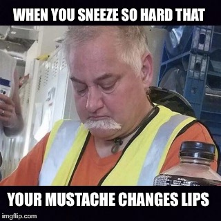 WHEN YOU SNEEZE SO HARD THAT YOUR MUSTACHE CHANGES LIPS | image tagged in sneeze | made w/ Imgflip meme maker