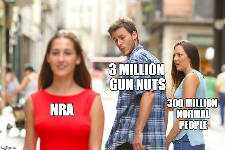 Distracted Boyfriend Meme | NRA 3 MILLION GUN NUTS 300 MILLION NORMAL PEOPLE | image tagged in memes,distracted boyfriend | made w/ Imgflip meme maker