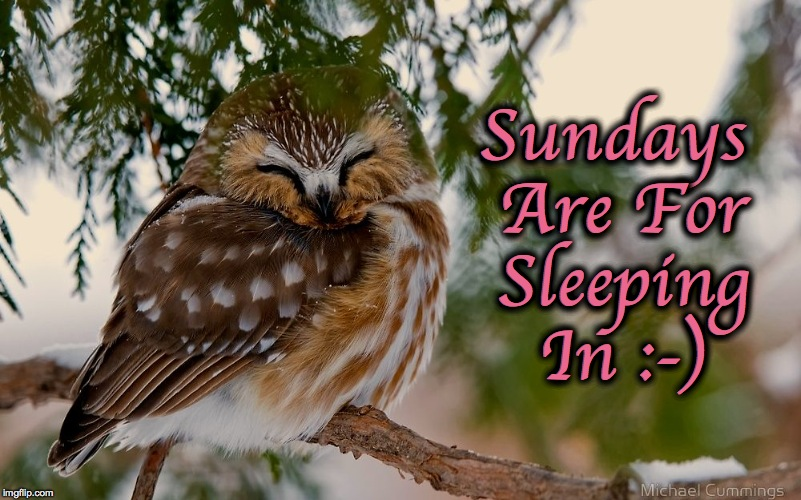 Sundays :-) | Sundays Are For Sleeping In :-) | image tagged in sleeping in | made w/ Imgflip meme maker