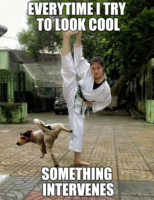 We all have those moments | EVERYTIME I TRY TO LOOK COOL SOMETHING INTERVENES | image tagged in trying,cool,martial arts,dog,piss,pissed | made w/ Imgflip meme maker