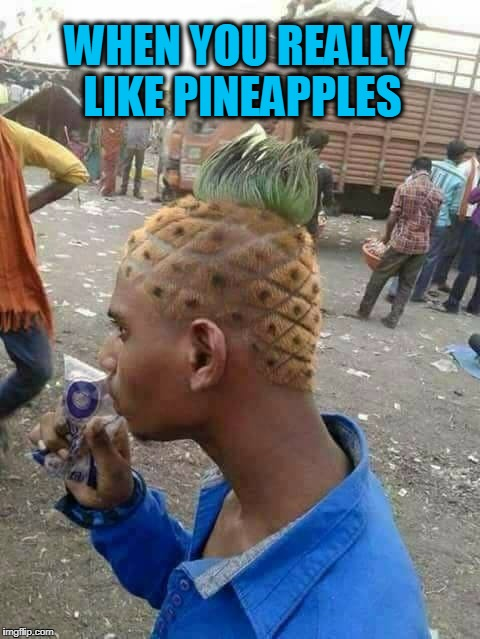 WHEN YOU REALLY LIKE PINEAPPLES | image tagged in pineapple,haircut | made w/ Imgflip meme maker