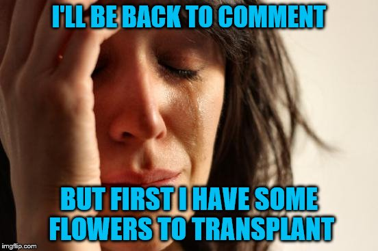 First World Problems Meme | I'LL BE BACK TO COMMENT BUT FIRST I HAVE SOME FLOWERS TO TRANSPLANT | image tagged in memes,first world problems | made w/ Imgflip meme maker