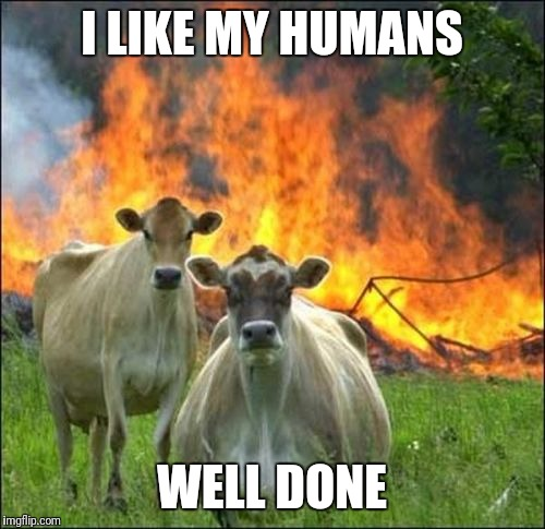Evil Cows | I LIKE MY HUMANS WELL DONE | image tagged in memes,evil cows | made w/ Imgflip meme maker