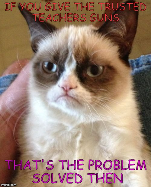 Grumpy Cat Meme | IF YOU GIVE THE TRUSTED TEACHERS GUNS THAT'S THE PROBLEM SOLVED THEN | image tagged in memes,grumpy cat | made w/ Imgflip meme maker