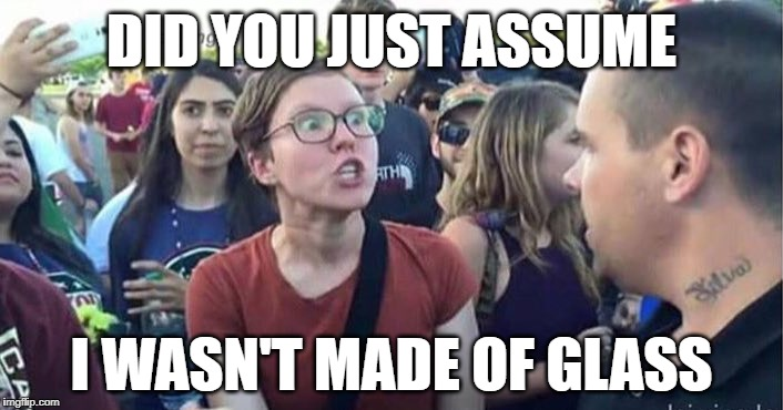 Snowflakes AKA Glass Cannons | DID YOU JUST ASSUME I WASN'T MADE OF GLASS | image tagged in did you just assume my gender,snowflake,special snowflake,triggered,offended,victim | made w/ Imgflip meme maker