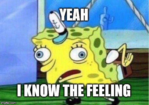 Mocking Spongebob Meme | YEAH I KNOW THE FEELING | image tagged in memes,mocking spongebob | made w/ Imgflip meme maker