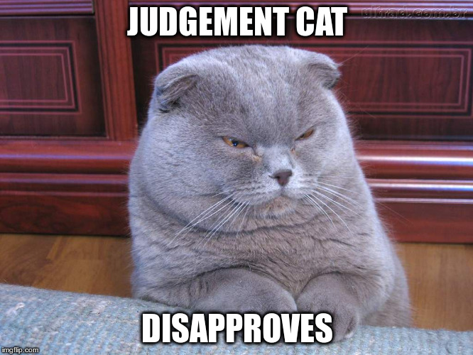 It's What He Does | JUDGEMENT CAT DISAPPROVES | image tagged in judgement cat | made w/ Imgflip meme maker