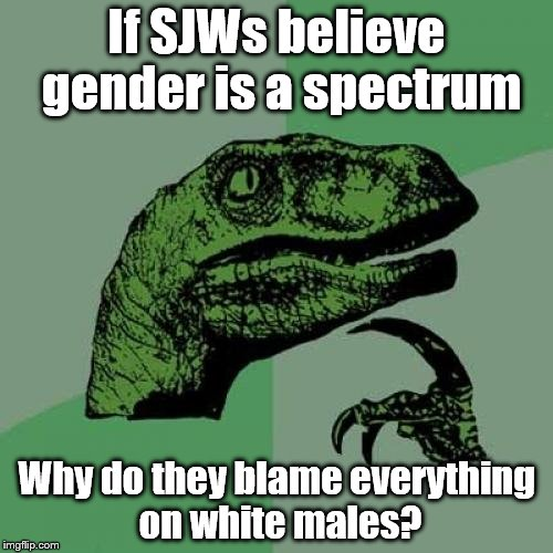Philosoraptor Meme | If SJWs believe gender is a spectrum Why do they blame everything on white males? | image tagged in memes,philosoraptor | made w/ Imgflip meme maker