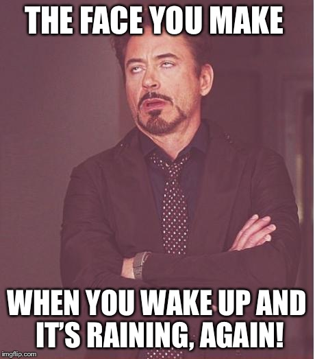 Face You Make Robert Downey Jr Meme | THE FACE YOU MAKE WHEN YOU WAKE UP AND IT'S RAINING, AGAIN! | image tagged in memes,face you make robert downey jr | made w/ Imgflip meme maker