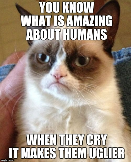 Grumpy Cat Meme | YOU KNOW WHAT IS AMAZING ABOUT HUMANS WHEN THEY CRY IT MAKES THEM UGLIER | image tagged in memes,grumpy cat | made w/ Imgflip meme maker
