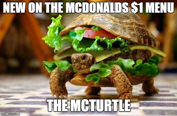 Mcturtle | NEW ON THE MCDONALDS $1 MENU THE MCTURTLE | image tagged in turtle burger,mcdonalds,funny memes | made w/ Imgflip meme maker
