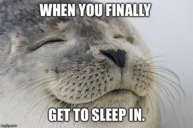 Satisfied Seal Meme | WHEN YOU FINALLY GET TO SLEEP IN. | image tagged in memes,satisfied seal | made w/ Imgflip meme maker