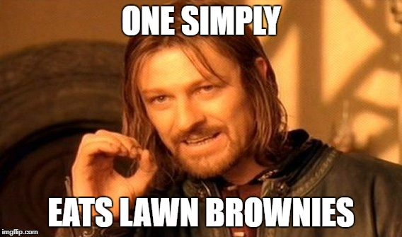 One Does Not Simply Meme | ONE SIMPLY EATS LAWN BROWNIES | image tagged in memes,one does not simply | made w/ Imgflip meme maker
