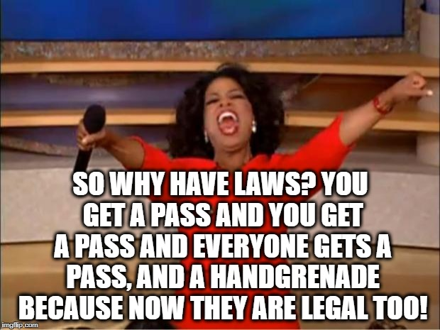Oprah You Get A Meme | SO WHY HAVE LAWS? YOU GET A PASS AND YOU GET A PASS AND EVERYONE GETS A PASS, AND A HANDGRENADE BECAUSE NOW THEY ARE LEGAL TOO! | image tagged in memes,oprah you get a | made w/ Imgflip meme maker