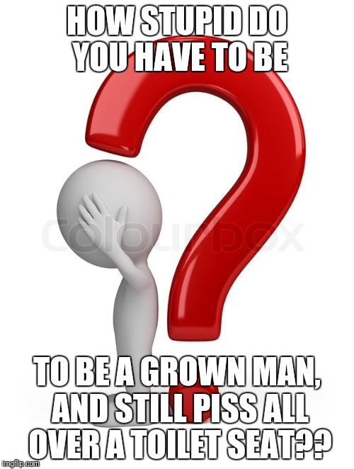HOW STUPID DO YOU HAVE TO BE TO BE A GROWN MAN, AND STILL PISS ALL OVER A TOILET SEAT?? | image tagged in how about | made w/ Imgflip meme maker