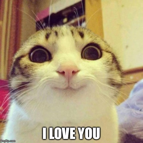 Smiling Cat Meme | I LOVE YOU | image tagged in memes,smiling cat | made w/ Imgflip meme maker