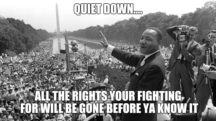 QUIET DOWN.... ALL THE RIGHTS YOUR FIGHTING FOR WILL BE GONE BEFORE YA KNOW IT | image tagged in look at all these violent people | made w/ Imgflip meme maker