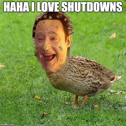 The Data Ducky | HAHA I LOVE SHUTDOWNS | image tagged in the data ducky | made w/ Imgflip meme maker