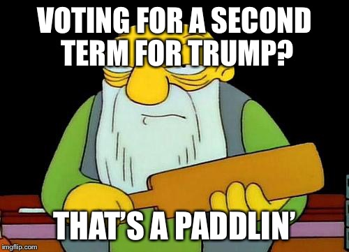 That's a paddlin' | VOTING FOR A SECOND TERM FOR TRUMP? THAT'S A PADDLIN' | image tagged in memes,that's a paddlin' | made w/ Imgflip meme maker