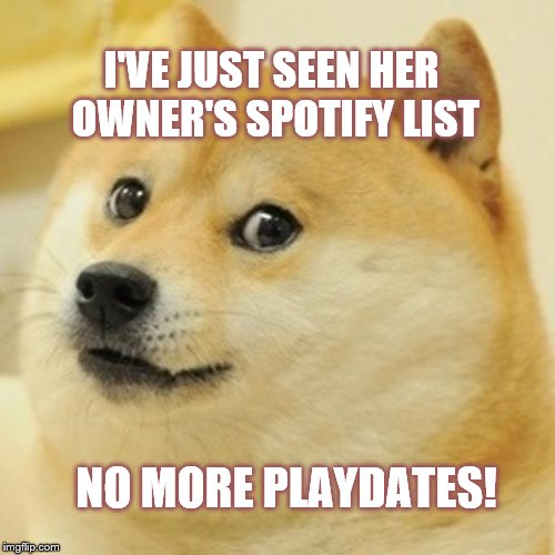 Doge | I'VE JUST SEEN HER OWNER'S SPOTIFY LIST NO MORE PLAYDATES! | image tagged in memes,doge | made w/ Imgflip meme maker