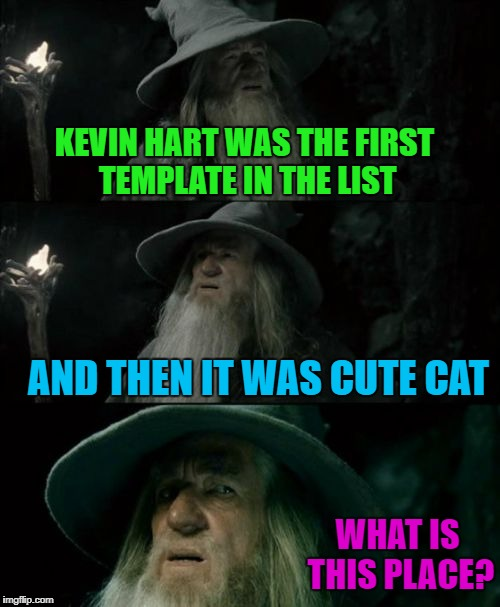 KEVIN HART WAS THE FIRST TEMPLATE IN THE LIST AND THEN IT WAS CUTE CAT WHAT IS THIS PLACE? | made w/ Imgflip meme maker