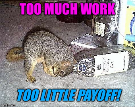 Frustrated Squirrel | TOO MUCH WORK TOO LITTLE PAYOFF! | image tagged in frustrated squirrel | made w/ Imgflip meme maker