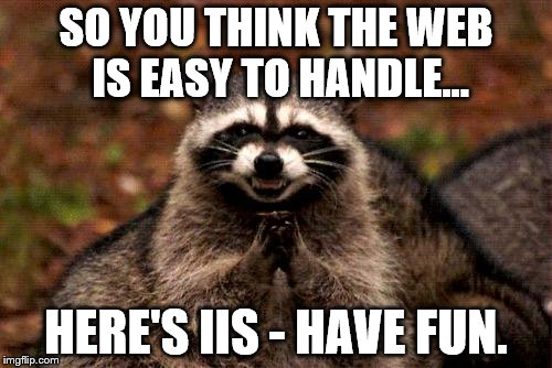 Evil Plotting Raccoon | SO YOU THINK THE WEB IS EASY TO HANDLE... HERE'S IIS - HAVE FUN. | image tagged in memes,evil plotting raccoon | made w/ Imgflip meme maker