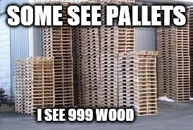Fortnite Funny |  SOME SEE PALLETS; I SEE 999 WOOD | image tagged in fortnite,epic,pc,gaming,pc gaming,online gaming | made w/ Imgflip meme maker
