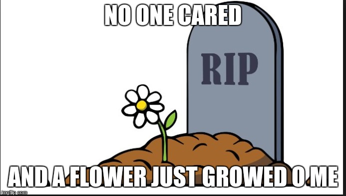 lol | NO ONE CARED AND A FLOWER JUST GROWED O ME | image tagged in rip | made w/ Imgflip meme maker