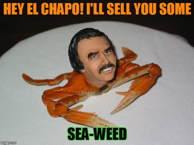 The new drug | HEY EL CHAPO! I'LL SELL YOU SOME SEA-WEED | image tagged in puns,dank memes,memes,el chapo,weed,crabs | made w/ Imgflip meme maker
