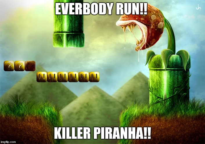 Killer Piranha! | EVERBODY RUN!! KILLER PIRANHA!! | image tagged in in real life,mario | made w/ Imgflip meme maker