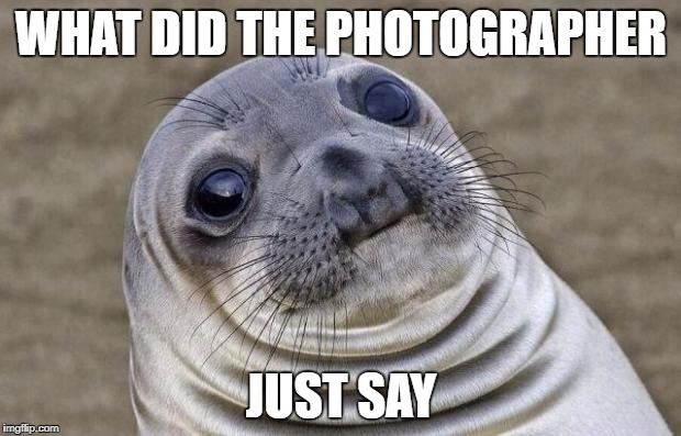 Awkward Moment Sealion Meme | WHAT DID THE PHOTOGRAPHER JUST SAY | image tagged in memes,awkward moment sealion | made w/ Imgflip meme maker
