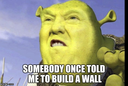 de memes start coming and don't stop | SOMEBODY ONCE TOLD ME TO BUILD A WALL | image tagged in shrek,trump | made w/ Imgflip meme maker