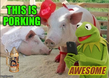 THIS IS PORKING AWESOME | made w/ Imgflip meme maker