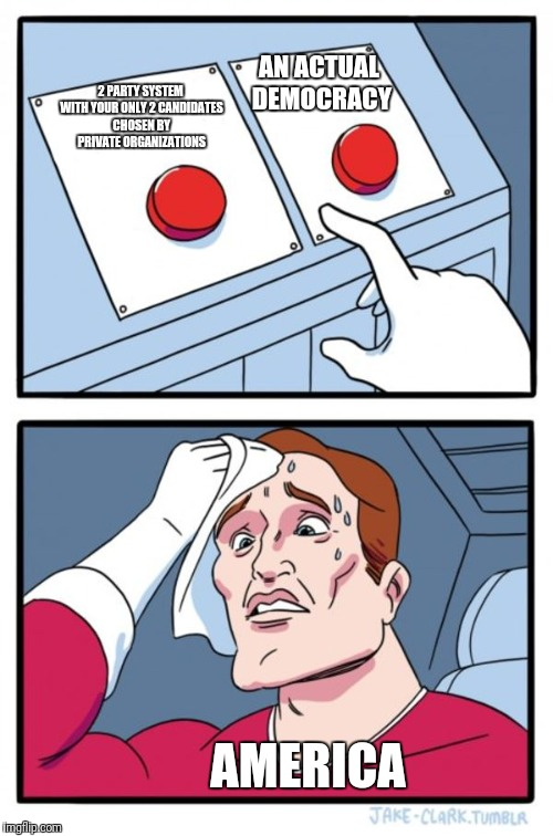 Two Buttons Meme | 2 PARTY SYSTEM WITH YOUR ONLY 2 CANDIDATES CHOSEN BY PRIVATE ORGANIZATIONS AN ACTUAL DEMOCRACY AMERICA | image tagged in memes,two buttons | made w/ Imgflip meme maker