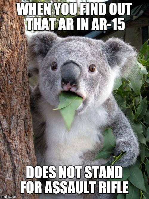 Surprised Koala Meme | WHEN YOU FIND OUT THAT AR IN AR-15 DOES NOT STAND FOR ASSAULT RIFLE | image tagged in memes,surprised koala | made w/ Imgflip meme maker