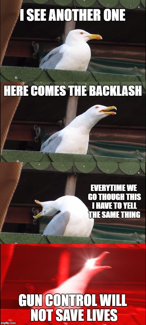 Inhaling Seagull Meme | I SEE ANOTHER ONE HERE COMES THE BACKLASH EVERYTIME WE GO THOUGH THIS I HAVE TO YELL THE SAME THING GUN CONTROL WILL NOT SAVE LIVES | image tagged in memes,inhaling seagull | made w/ Imgflip meme maker