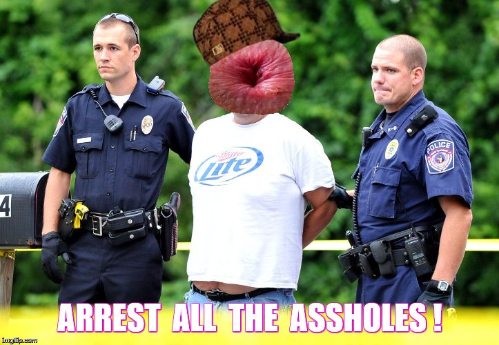 ARREST  ALL  THE  ASSHOLES ! | made w/ Imgflip meme maker